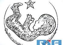 Исламский каллиграф из Дагестана удивляет своими работами