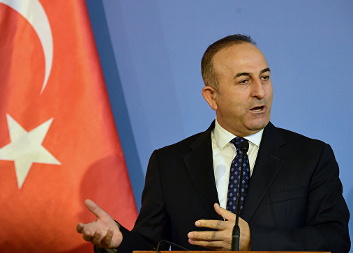 Турция настаивает набольшой наземной операции против ИГИЛ